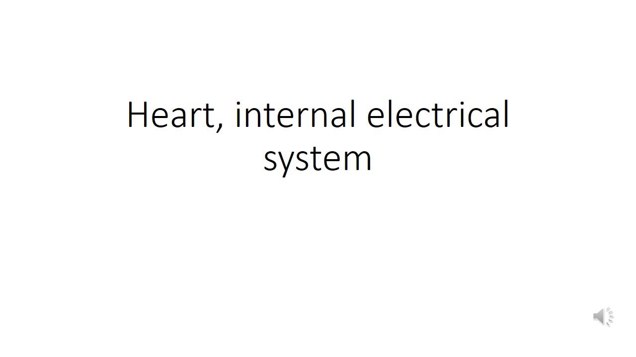 Cardiovascular System 4, Podcast, Heart internal electrical system