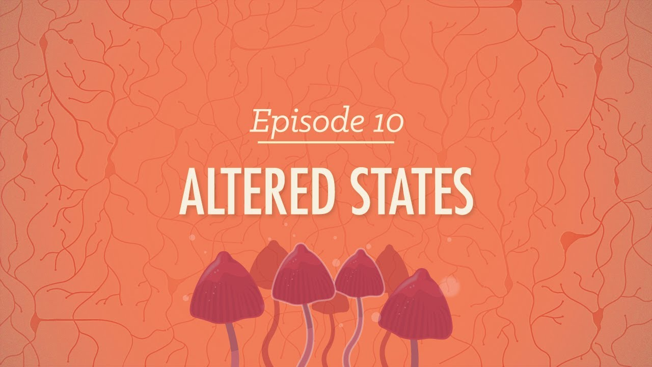 Altered States: Crash Course Psychology #10