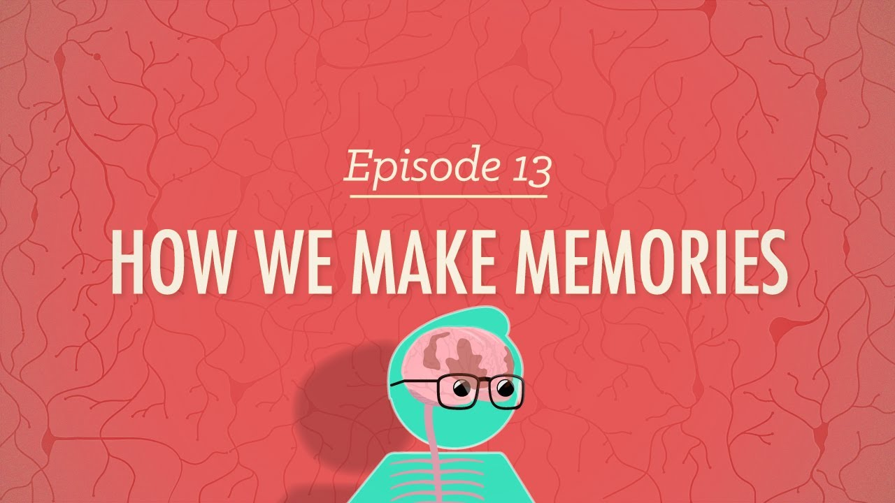 How We Make Memories: Crash Course Psychology #13