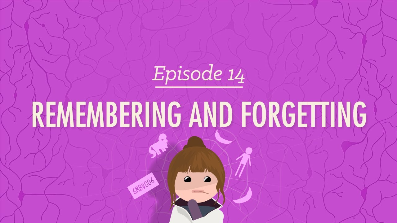 Remembering and Forgetting: Crash Course Psychology #14