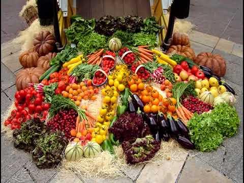 18  Vegeterijanstvo 1
