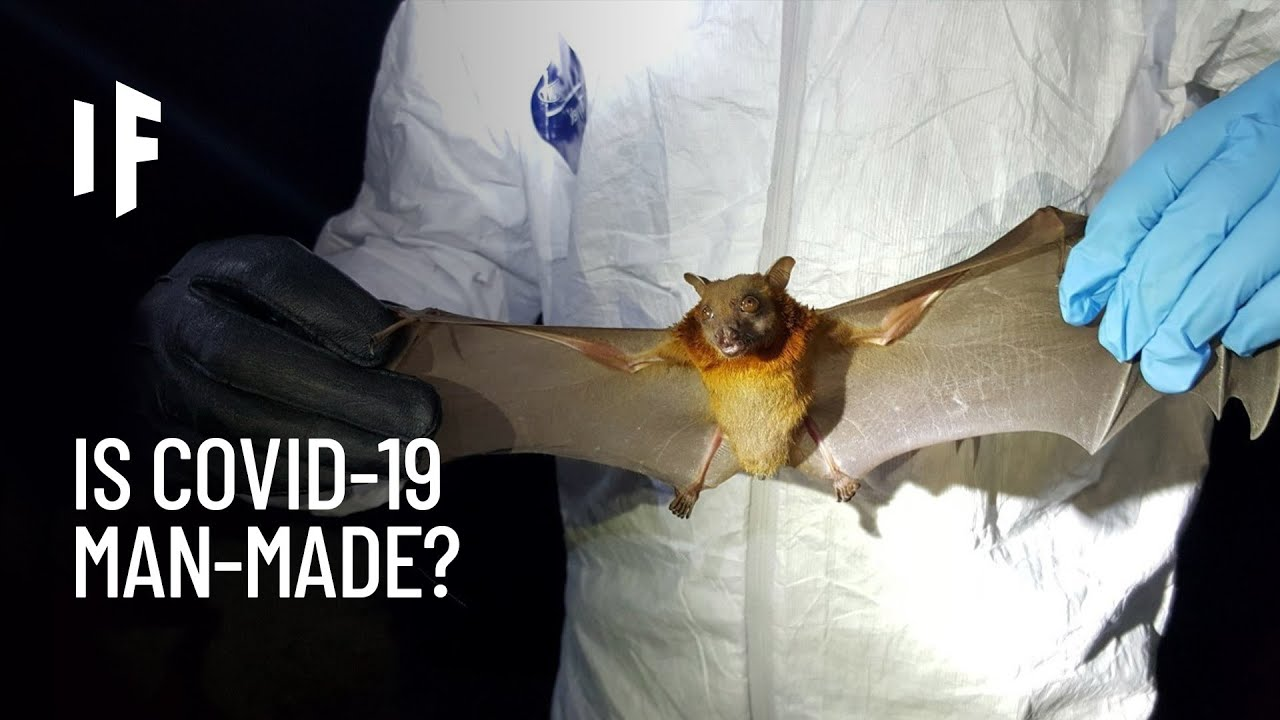 What If Covid-19 Was Made in a Lab?
